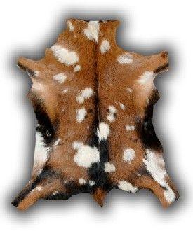 Taxidermia.net, la tienda en línea de Taxidermia El Ciervo. alfombras de piel de cordero, cabra, gacela, blesbuck, imitación, etc.