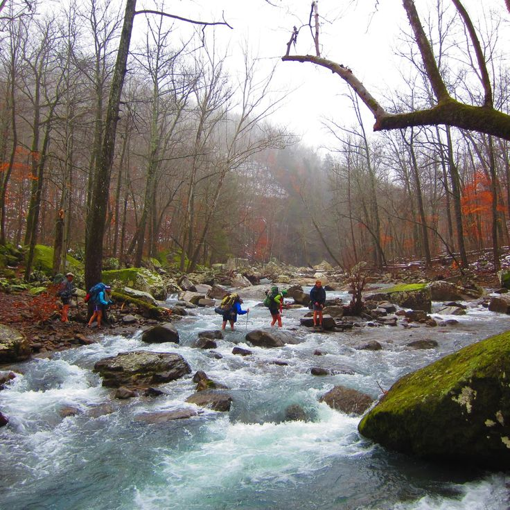 Hiking Tours Usa: 62 Best Rivers, Lakes And Streams In NWA Images On