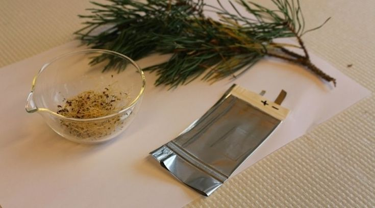 Alfalfa seeds and pine resin are two major sources of material for these new batteries.