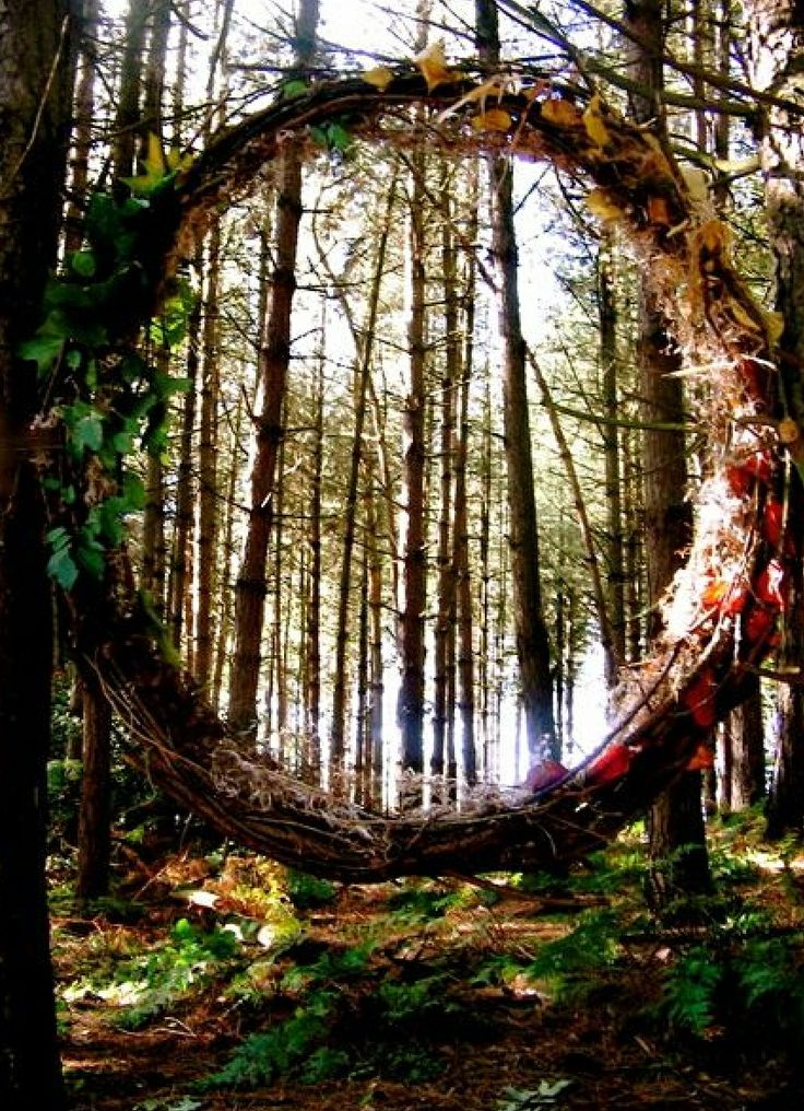 Best 25 moon gate ideas on pinterest - The hideout in the woods an artists dream ...