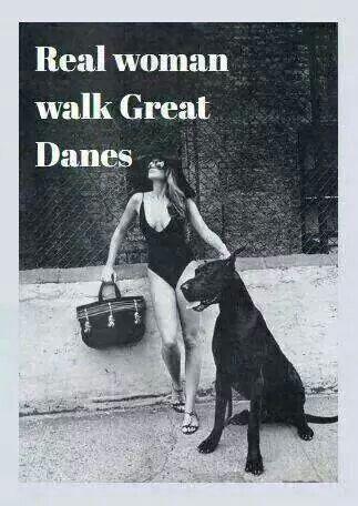 real women walk great danes