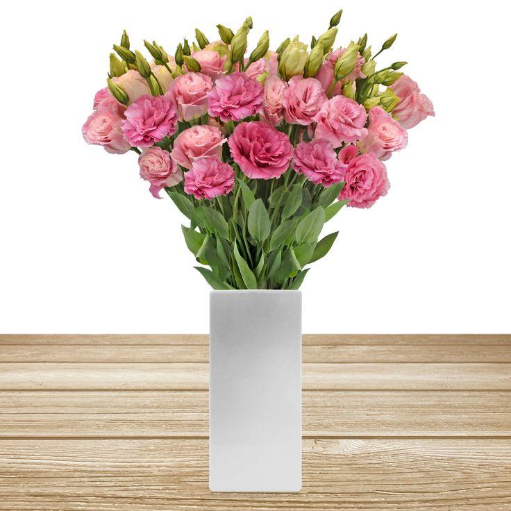 PINK LISIANTHUS #roses,#pinkflowers,#gardening,#plants,#love,#bridal,#holidays,#anniversarygifts,#gift,#partyideas,#partydecorations,#fasshion,#christmas,#homedecor,#events,#giftsforher,#cooking,#fasshion,#style,#shopping,#onlineshopping,#online,#disney,#disneyland,#oprah,#usa,#costco,#sams,#art,#artist,#miami,#texas,#washingtondc,#newyork,#atlanta,#dogs,#family,#unitedstates,#babies,#lasvegas,#orlando,#chicago,#sandiego,#california,#sanfrancisco,#houston,#design,#losangeles,#fall,#summer