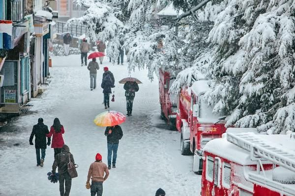 Shimla Tour Package- Enjoy the tour of Shimla in winter and in Summer as well. Feel the heaven in the earth at Shimla.