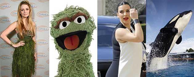 Moeilijk, moeilijk, moeilijk. Keuzes, keuzes, keuzes, wie staat het beter? Mischa Barton of Oscar Mopperkont? Kim Kardashian of een orka?