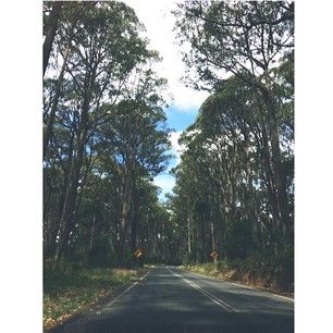 Domino Trail, Trentham | 21 Melbourne Walks That Will Take Your Breath Away