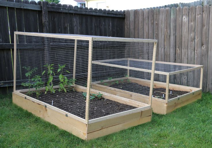 How To Make A Raised Garden Bed Cover With Hinges In The Garden Pinterest Gardens Plants