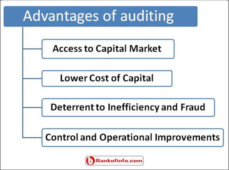 auditing financial audit and inventory essay Responsibilities and functions of the  his audit has been made in accordance with generally accepted auditing stan-  sideration of fraud in a financial .