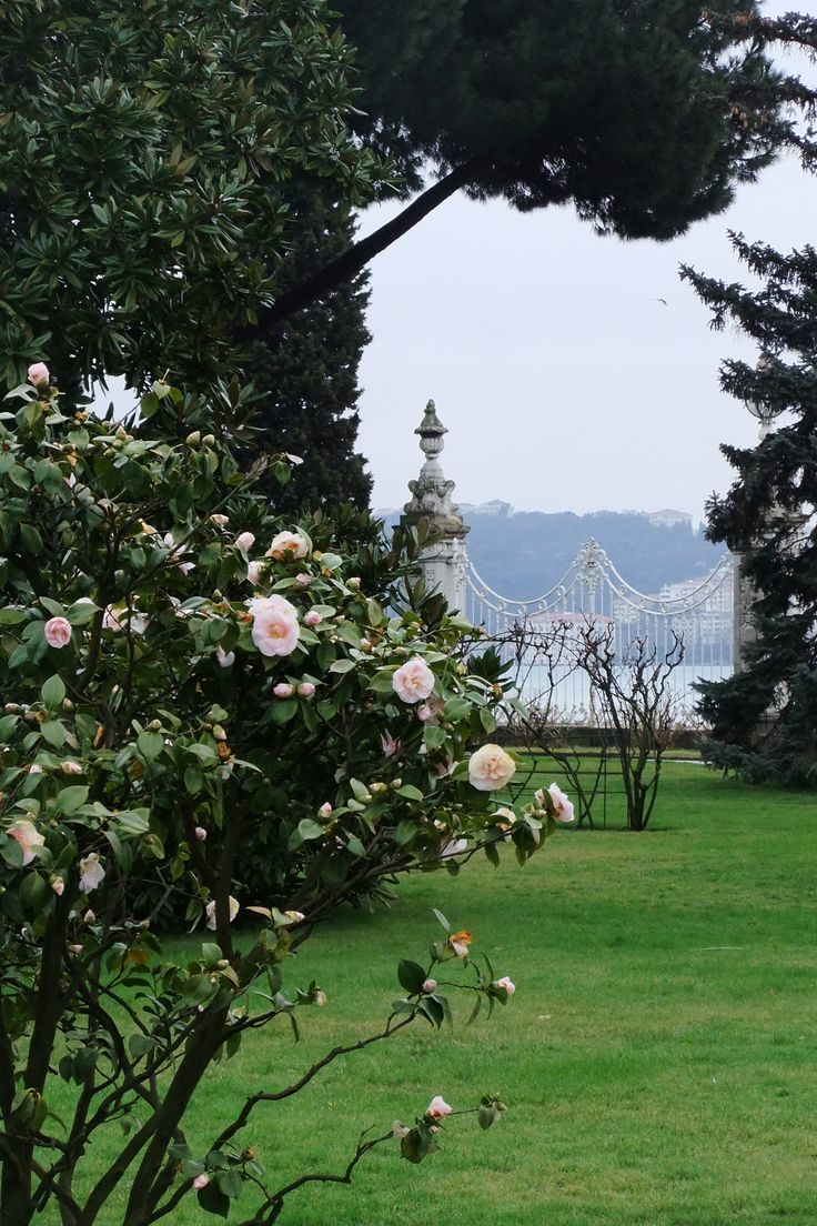 Dolmabahce Palace, Istanbul-- View in The Garden
