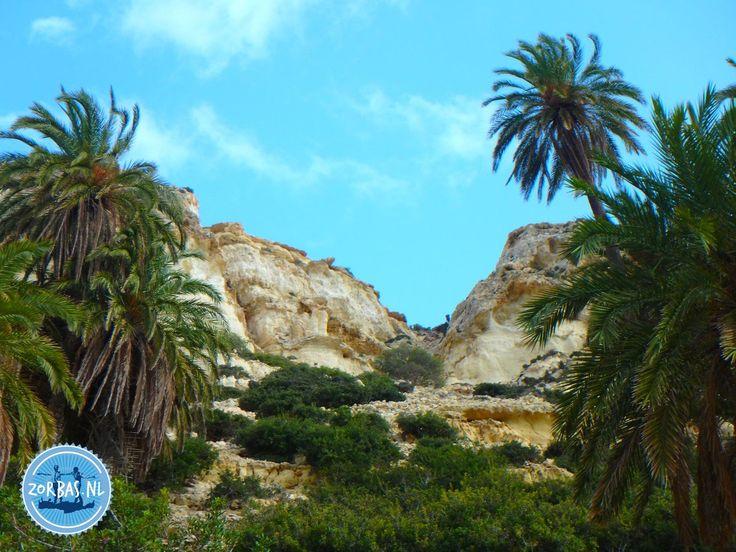 Martsalo kloof en wandeling op kreta Griekenland:U heeft echt eens zin om een wandelvakantie naar Kreta Griekenland te boeken, maar u weet eigenlijk niet hoe u op de mooiste plekken terecht kunt komen. Hoe pakt u dat het beste aan? Dat is niet moeilijk denkt u dan; gewoon het internet afspeuren en u vindt via