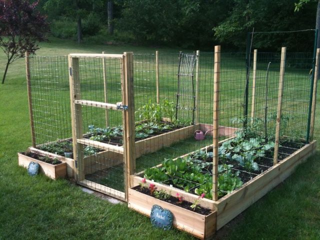 Keep the critters out pallet garden pinterest gardens note and deer for How to keep deer out of a garden
