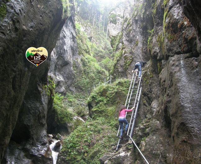 Cele mai frumoase trasee montane din Braşov. Muntele Tâmpa, Piatra Craiului şi Masivul Piatra Mare oferă privelişti de vis | adevarul.ro