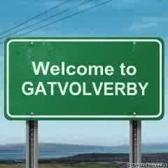 Gatvol.Toevalig is die paaie ook vol gate.!!! south african dialect