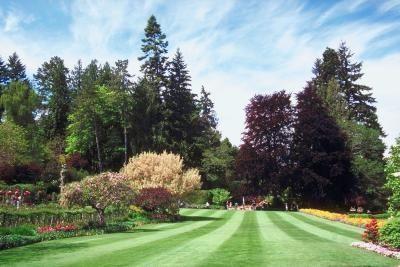 Large Acreage Landscaping