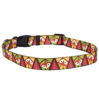 Fall Fox Dog Collar with Tag-A-Long