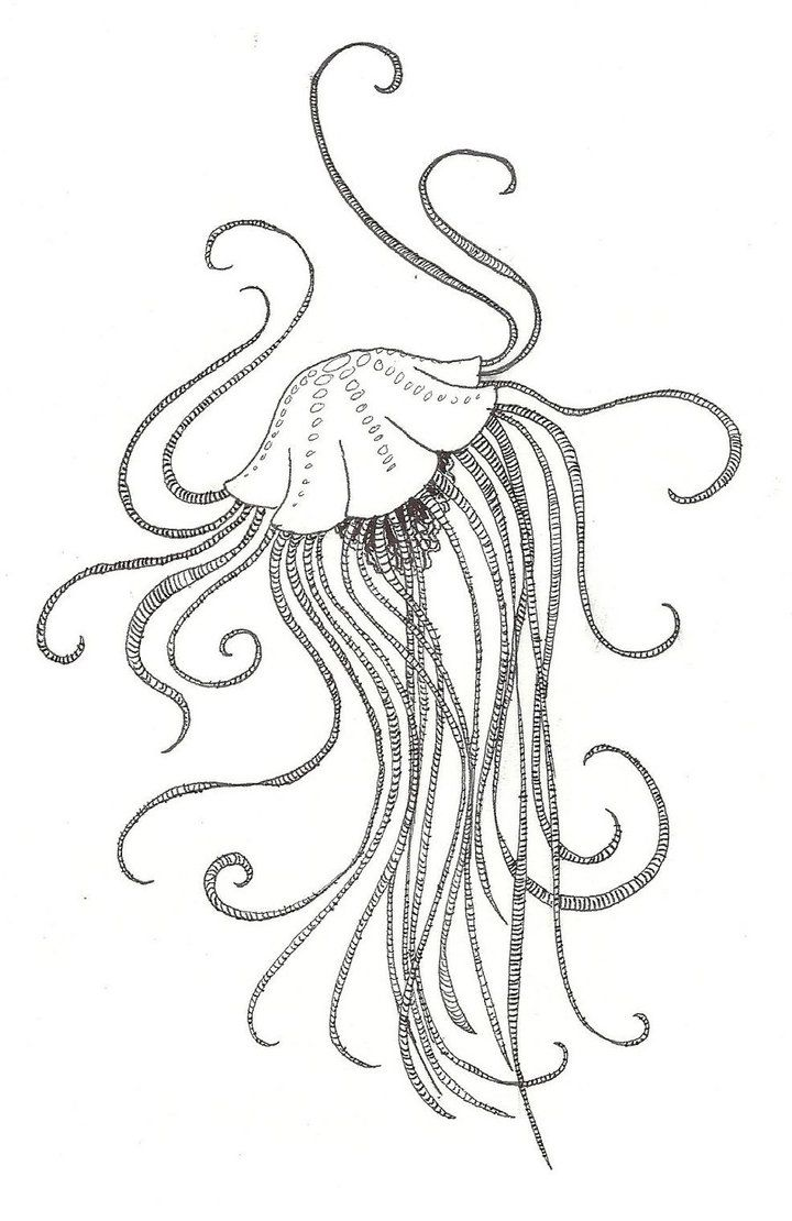 Coloring pages jellyfish - Fish Art Design Microsoft Windows Photo Gallery 6 0 6001 18000 Poiuytre00750 Deviantart Com