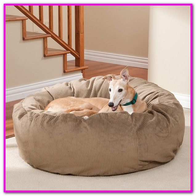 Amazing Argos Dog Beds Xlarge Products 1 30 Of 2761 Get Set Evergreenethics Interior Chair Design Evergreenethicsorg