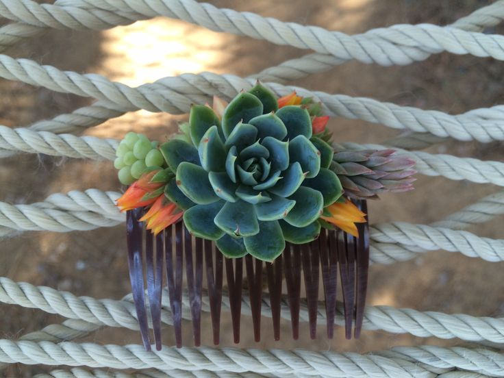 Our first succulent bridal hair comb <3