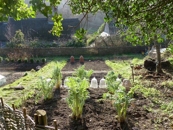 54 best allotment ideas images on pinterest vegetable for Garden cloche designs