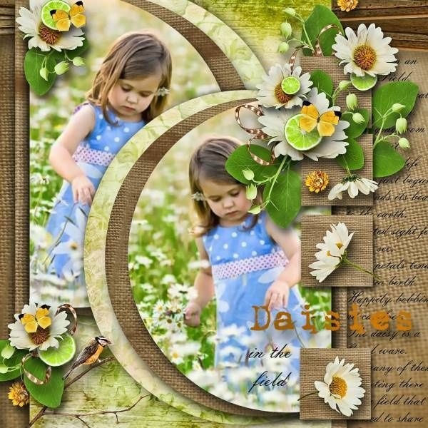 """Sweet Daisies in the Filed"" layout. Love the opposing circles and texture in this layout! Found on mesoscrappy.com Simple Pleasures Rubber Stamps and Scrapbooking."