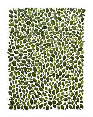 BotanicalPrint-CommonHours-Robert&Stella-Shadow-01.jpg