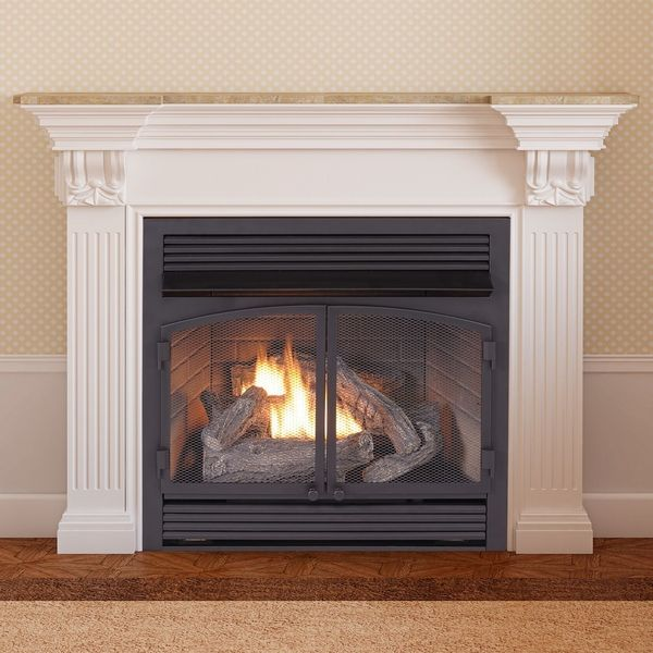 Duluth Forge 29 Inch Dual Fuel Vent Free Fireplace Insert