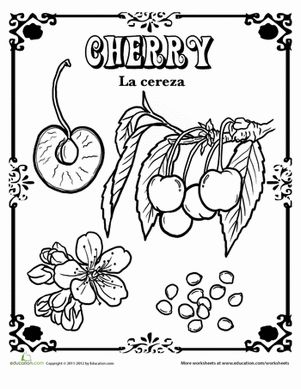 100 best Food coloring images on Pinterest  Drawings Coloring