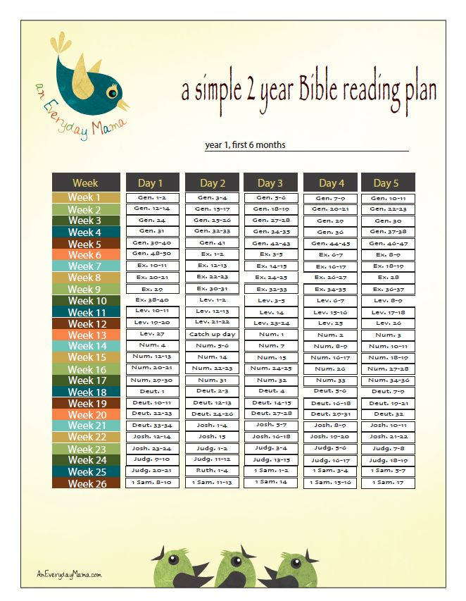 Sample 2 year bible reading plan an everyday mama blog for How do you read a blueprint
