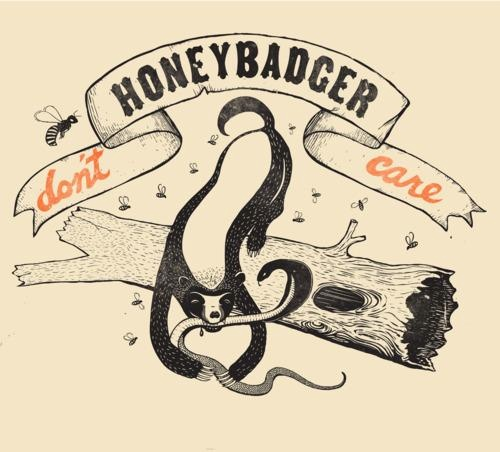 .Laugh, Dont Care, Stuff, Funny, Humor, Honey Badger, Things, Honeybadger, T Shirts