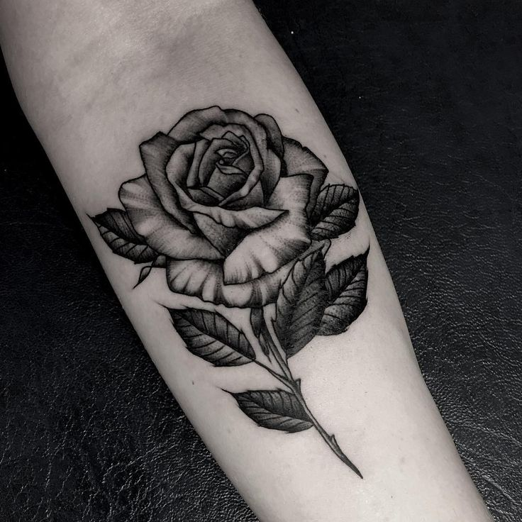 Best 25 rose tattoos for men ideas on pinterest mens rose feed your ink addiction with 50 of the most beautiful rose tattoo designs for men and women urmus Images