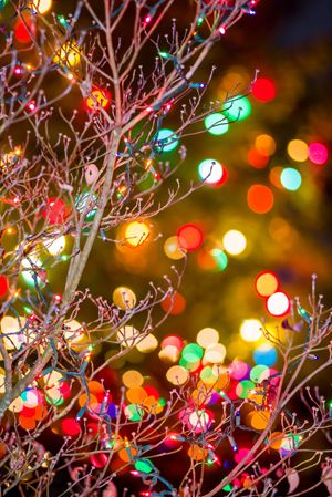 Shooting Holiday Lights