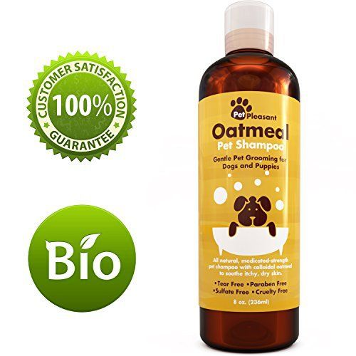 Oatmeal Pet Shampoo for Dogs & Puppies - Best All Natural Doggy Shampoo & Conditioner for Itchy and Dry Skin - Medicated Strength Deodorizer - 8 oz - http://www.thepuppy.org/oatmeal-pet-shampoo-for-dogs-puppies-best-all-natural-doggy-shampoo-conditioner-for-itchy-and-dry-skin-medicated-strength-deodorizer-8-oz/