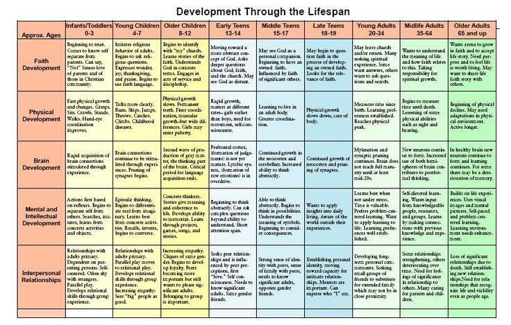 chart of development across the lifespan