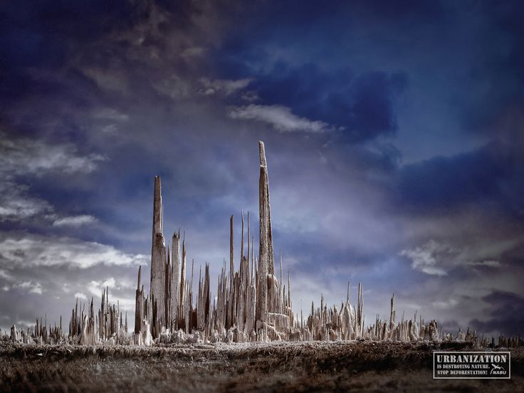 urbanisation and deforestation Deforestation is a major contributor to climate change and environmental damage see what is causing the gradual destruction of the world's woodlands.