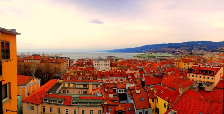 View over the rooftops of Trieste