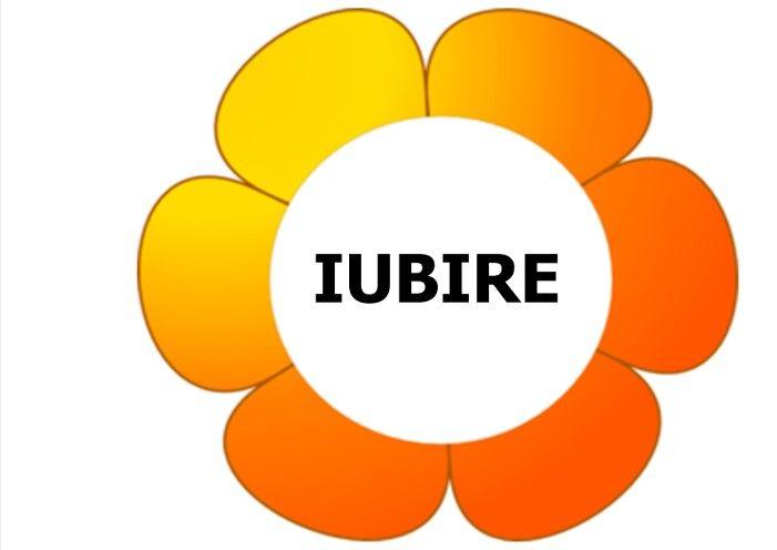 Planșe formule de politețe - IUBIRE
