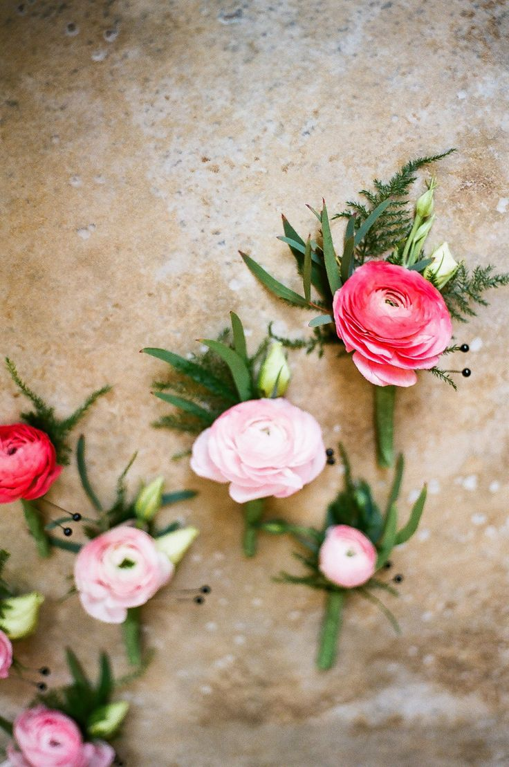Light pink ranunculus with nagi wrapped in a band of gold ribbon with the stems showing