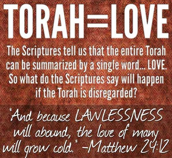 Torah Love Do You Try To Live The Israel