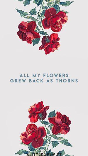 Bordered Iphone X Wallpaper Best 25 Lyrics Taylor Swift Ideas On Pinterest Taylor