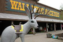 Wall Drug, South Dakota, advertised all over the west, had to go....very weird and funny place.