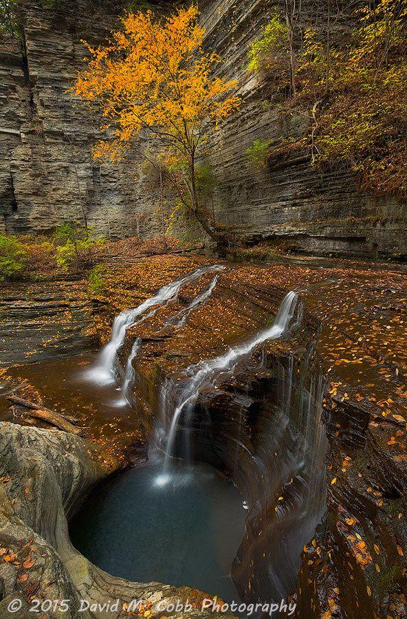 Buttermilk Creek (near Ithaca, New York) by David Cobb