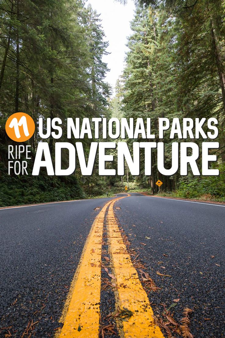 Though Americans are notorious for traveling internationally less than any other nationality, it's kind of understandable why. With incredible National Parks all over the country, the USA is, geographically, one of the most diverse and remarkable places on the planet.