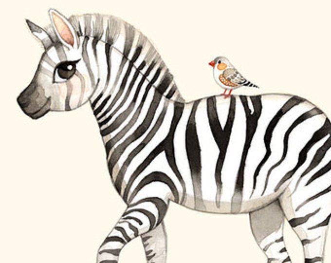 17 Mejores Ideas Sobre Dibujo Con Lineas En Pinterest: 17 Mejores Ideas Sobre Dibujo De Cebra En Pinterest