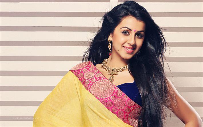 Download imagens Bollywood, Nikki Galrani, saree, a atriz indiana, morena, beleza