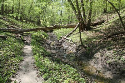 McBride Nature Recreation Area, Hiking Trails, Raptor Center, Iowa