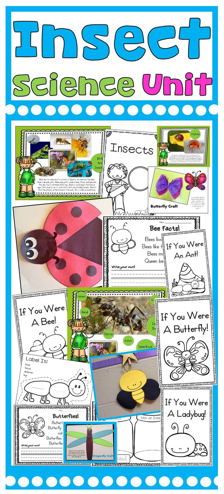 Insect Activities-Butterflies, Ladybugs, Ants, Bees, Grasshoppers, and more!