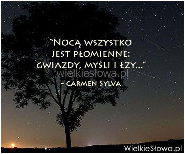 Nocą wszystko jest płomienne... #Sylva-Carmen,  #Noc