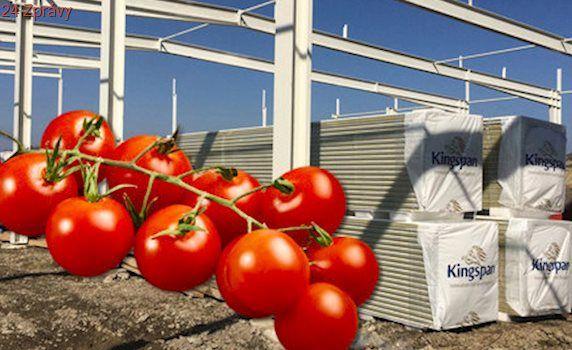 Šťavnatá a voňavá rajčata se vrátí: Na Moravě pro ně staví největší skleníky u nás!