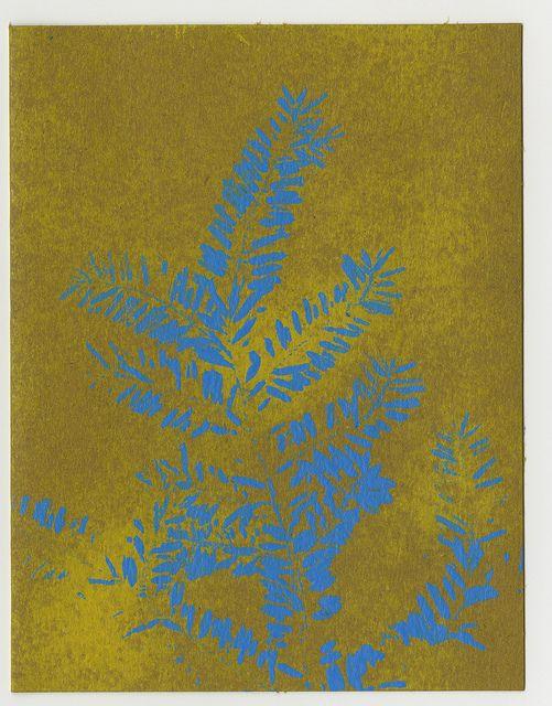 Visa gift card 25 pinterest itunes take a survey and get a visa gift card gift card visa negle Gallery