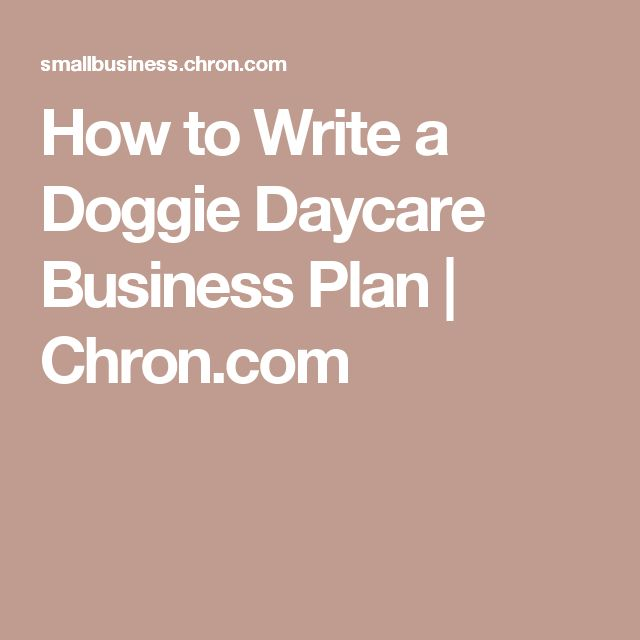 Daycare Business Plan Sample