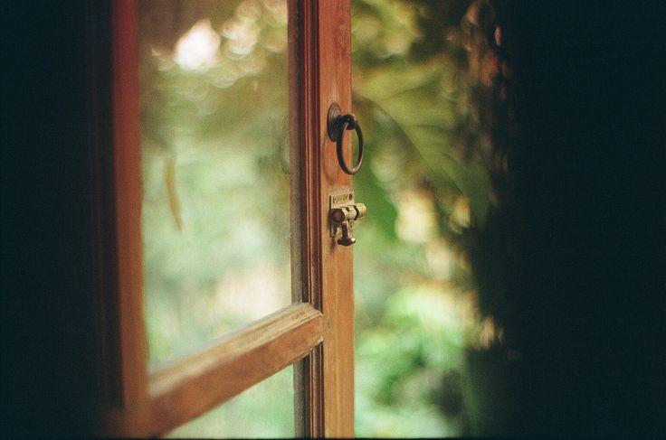 Window, Ricoh